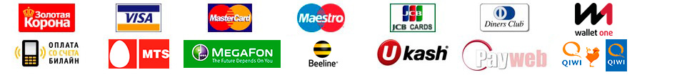 Electronic payment systems: services Commerce online | Payin